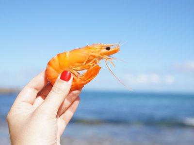 Víkend s plody moře
